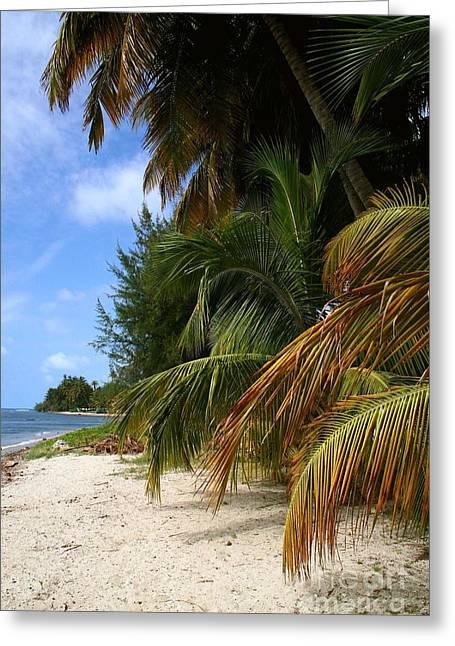 Ocean Art. Beach Decor Greeting Cards - Nude Beach Greeting Card by The Art of Alice Terrill