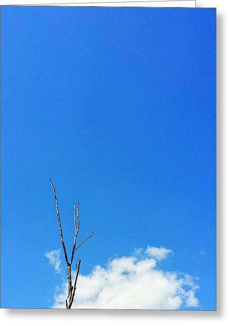 Minimal Landscape Greeting Cards - Solitude - Blue Sky Art By Sharon Cummings Greeting Card by Sharon Cummings