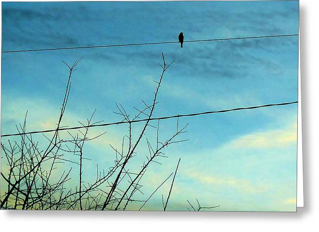Sunset Greeting Cards Greeting Cards - Solitude  Greeting Card by Julie Shiroma