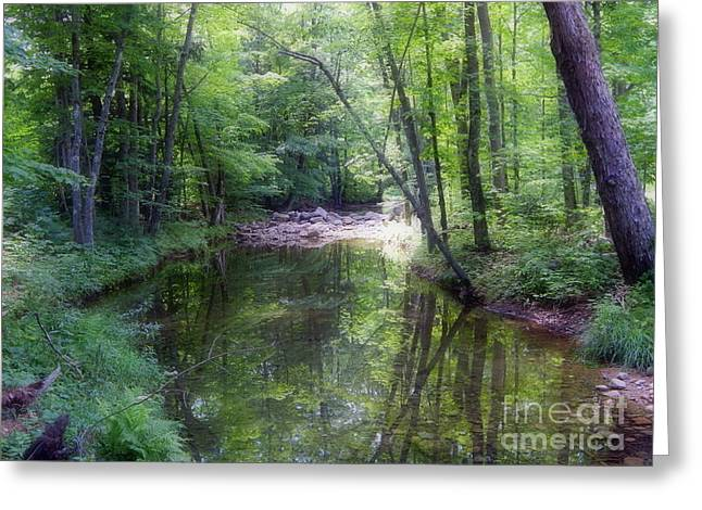 Recently Sold -  - New England Village Greeting Cards - Solitude Greeting Card by Karen Cook