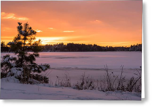 Landscape Iphone Phone Case Greeting Cards - Solitude Lake Horicon New Jersey Greeting Card by Terry DeLuco