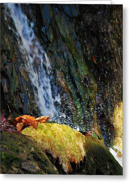 Coast Highway One Greeting Cards - Solstice Canyon Waterfall Greeting Card by Kyle Hanson