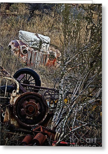 Rusted Cars Greeting Cards - Some Ford in the Weeds Greeting Card by Lee Craig