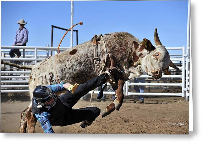 Bull Riding Greeting Cards - Some You Win Some You Lose Greeting Card by Karen Slagle