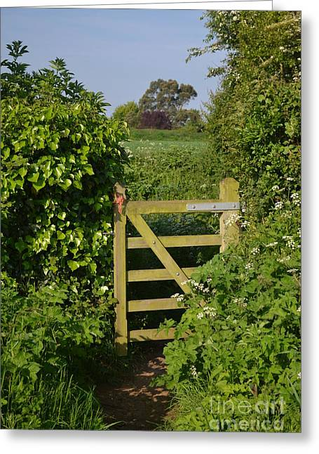 Somerset Countryside Gate Uk Greeting Card by Rene Triay Photography