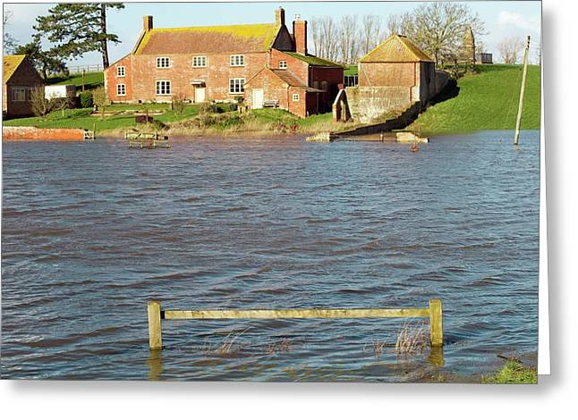 Somerset Levels Floods Greeting Card by David Woodfall Images