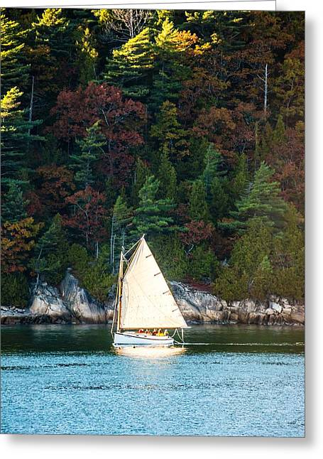 Somes Sound Greeting Cards - Somes Sound Sail Greeting Card by Tim Sullivan