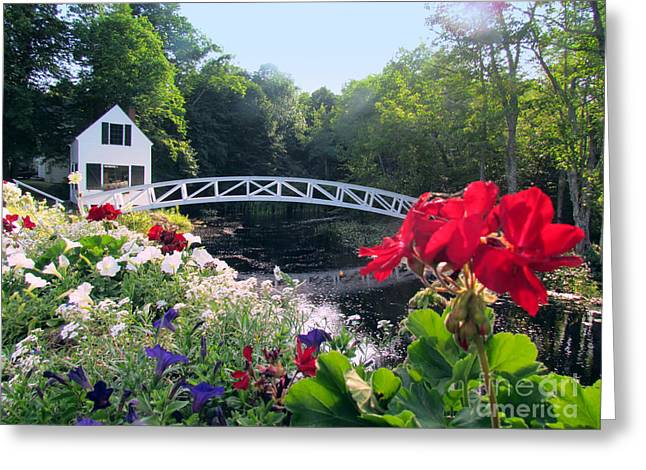 Somesville Maine Greeting Cards - Somesville Bridge and Home Greeting Card by Elizabeth Dow