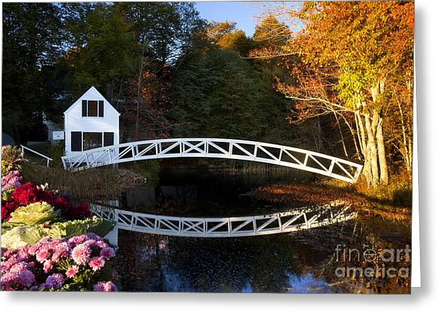 Somesville Maine Greeting Cards - Somesville Bridge Greeting Card by Brian Jannsen