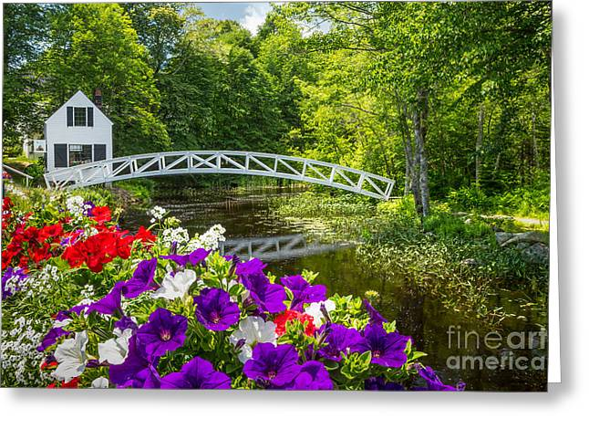 Spring In Maine Greeting Cards - Somesville Moon Bridge with Petunias Greeting Card by Susan Cole Kelly