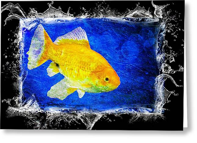 Goldfish Mixed Media Greeting Cards - Something Fishy Greeting Card by Aaron Berg