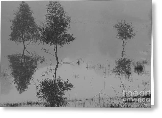 Floodplain Greeting Cards - Something to reflect on Greeting Card by Linda Lees