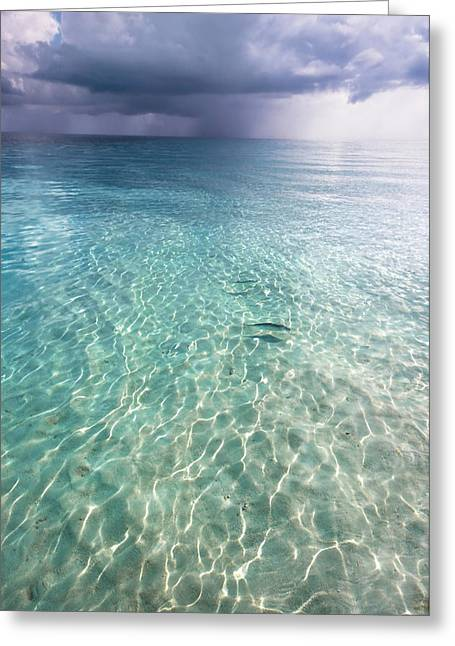 Maldives Greeting Cards - Somewhere is Rainy. Maldives Greeting Card by Jenny Rainbow