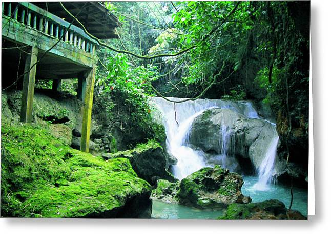 Costa Greeting Cards - Sommerset Falls  Greeting Card by Carey Chen