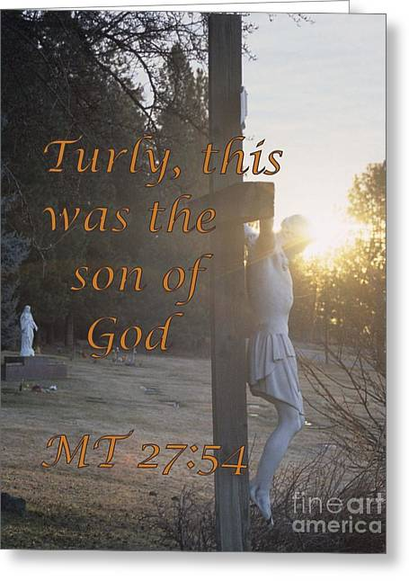 Gospel Of Matthew Greeting Cards - Son of God Greeting Card by Sharon Elliott
