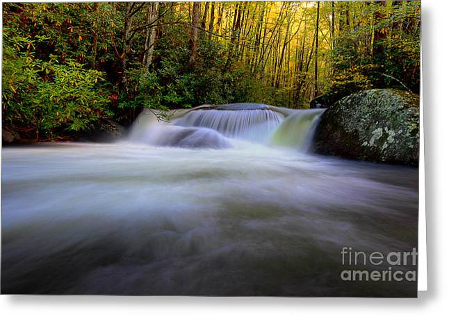 Flowing Stream Greeting Cards - Song Of The Mountains Greeting Card by Michael Eingle