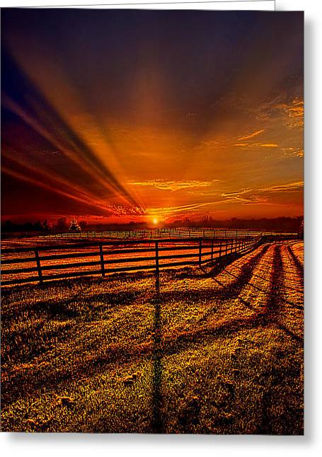 Geographic Greeting Cards - Song of the Setting Sun Greeting Card by Phil Koch