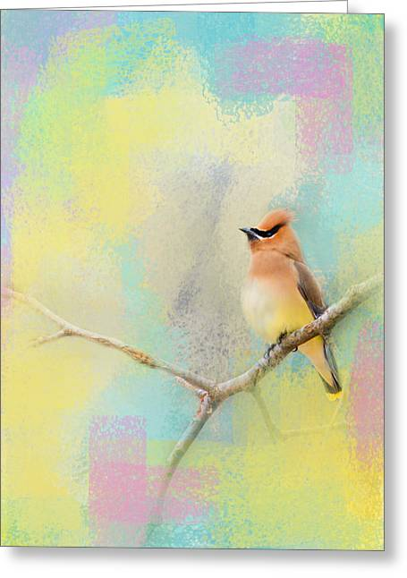 Cedar Waxwings Greeting Cards - Song of the Waxwing Greeting Card by Jai Johnson