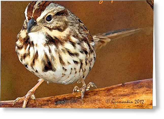 Greeting Card featuring the photograph Song Sparrow On Tree Branch by A Gurmankin