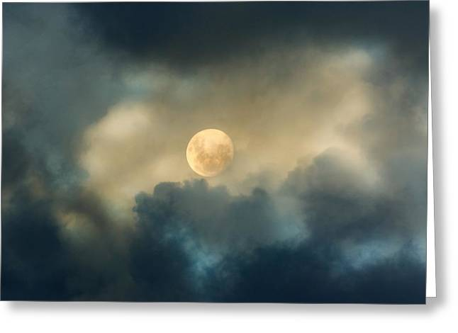 Night Photography Greeting Cards - Song To The Moon Greeting Card by Georgiana Romanovna