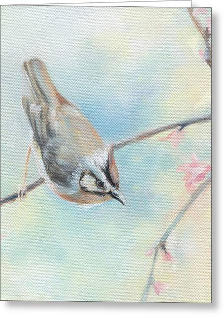Gray Bird Greeting Cards - Songbird Greeting Card by Natasha Denger