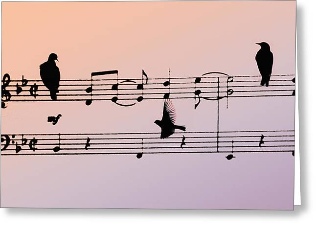 Crow. Bird Music Greeting Cards - Songbirds Greeting Card by Bill Cannon