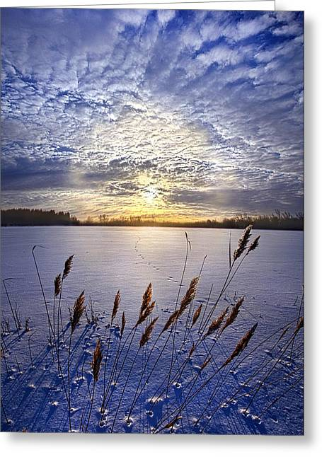 Sun Ray Greeting Cards - Songs of Surrender Greeting Card by Phil Koch