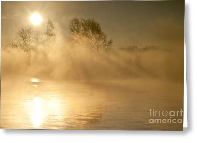 Arona Greeting Cards - Songs of the sun  Greeting Card by Mirari  Photography
