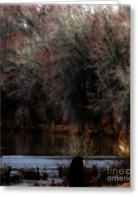 Mysterious Woman Greeting Cards - Songs of Winter Greeting Card by Steven  Digman