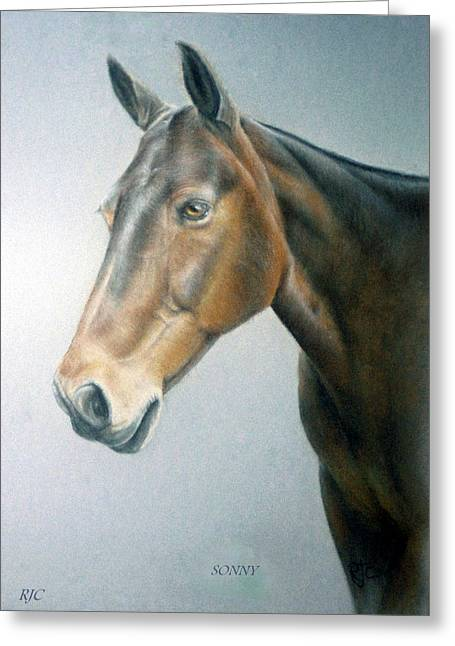 Equestrian Prints Pastels Greeting Cards - Sonny Greeting Card by Rosemary Colyer