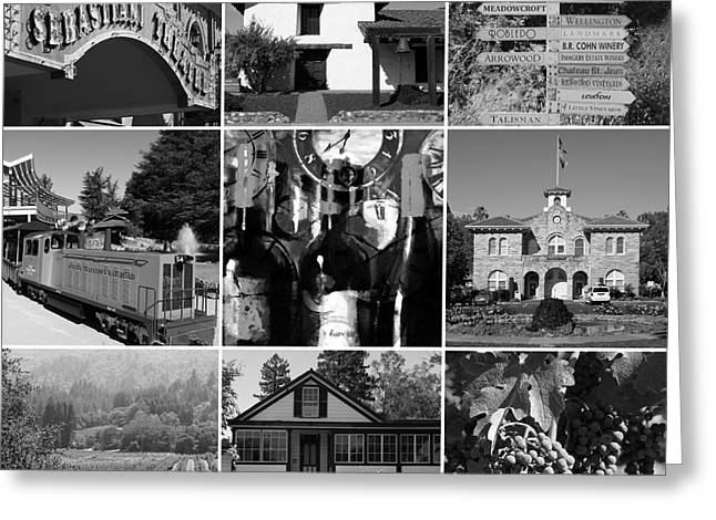 Hall Vineyards Greeting Cards - Sonoma County Wine Country 20140906 black and white Greeting Card by Wingsdomain Art and Photography