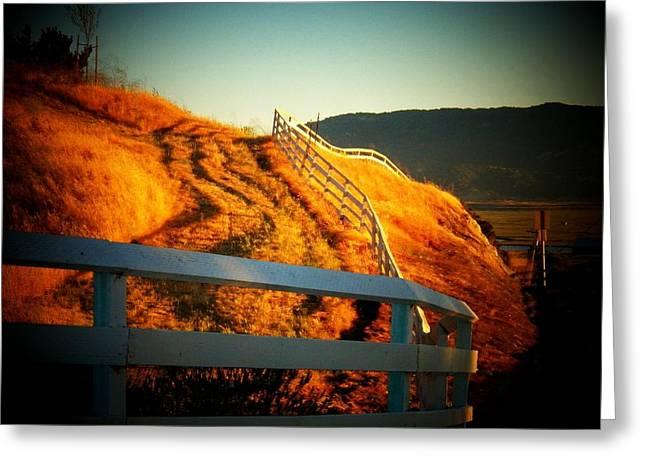 Sonoma County Greeting Cards - Sonoma Mountain Fence Greeting Card by Joyce Kimble Smith