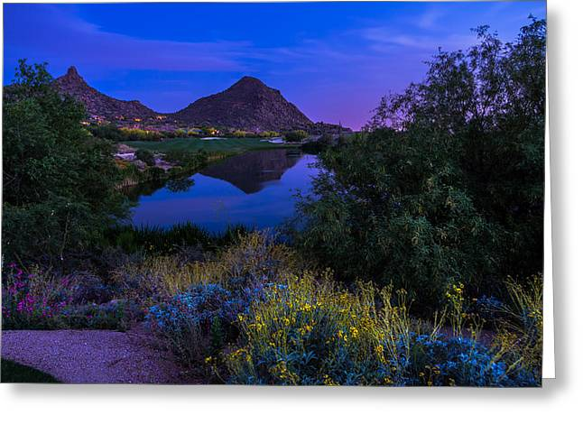 Sonoran Desert Greeting Cards - Sonoran Desert at Dusk Greeting Card by Scott McGuire