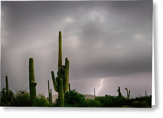 Arizona Lightning Greeting Cards - Sonoran Monsoon Lightning Thunderstorm Delight Greeting Card by James BO  Insogna