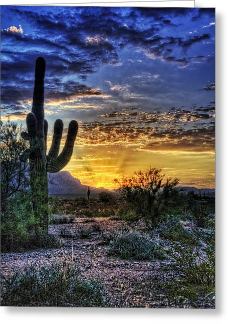 Sun Ray Greeting Cards - Sonoran Sunrise  Greeting Card by Saija  Lehtonen