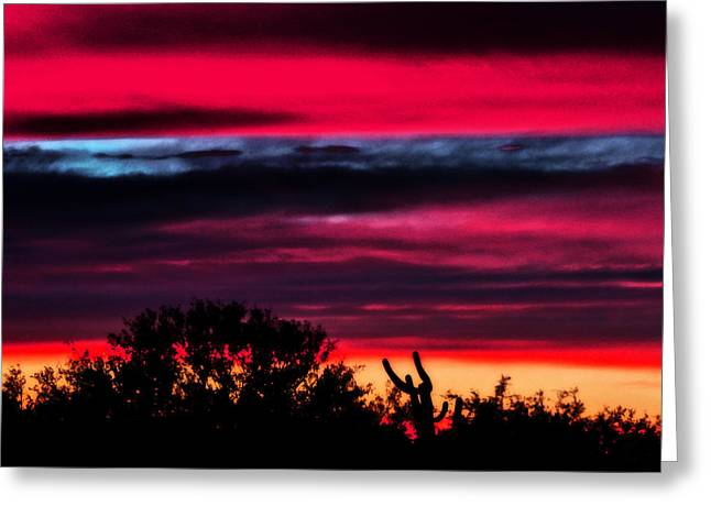Jon Van Gilder Greeting Cards - Sonoran Sunset Tucson Desert Greeting Card by Jon Van Gilder