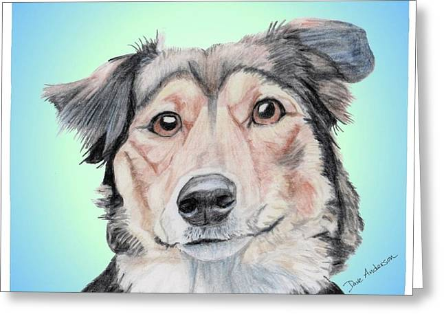 Collie Mixed Media Greeting Cards - Sophie a former shelter sweetie Greeting Card by Dave Anderson