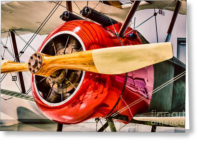 Aircraft Engine Greeting Cards - Sopwith Camel Greeting Card by Inge Johnsson