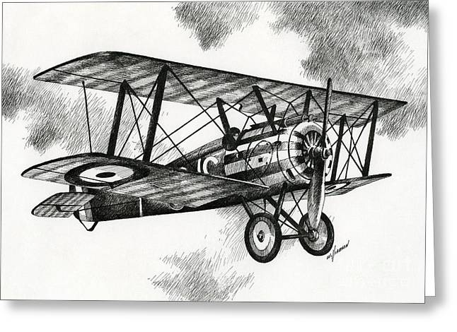 Aircraft Artist Greeting Cards - Sopwith F.1 Camel 1917 Greeting Card by James Williamson