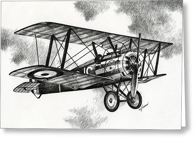 Single Drawings Greeting Cards - Sopwith F.1 Camel 1917 Greeting Card by James Williamson