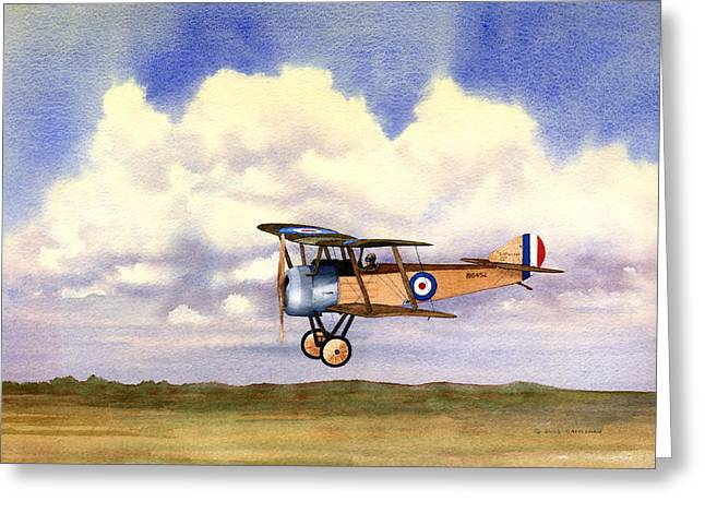 World War One Paintings Greeting Cards - Sopwith Pup Greeting Card by Douglas Castleman