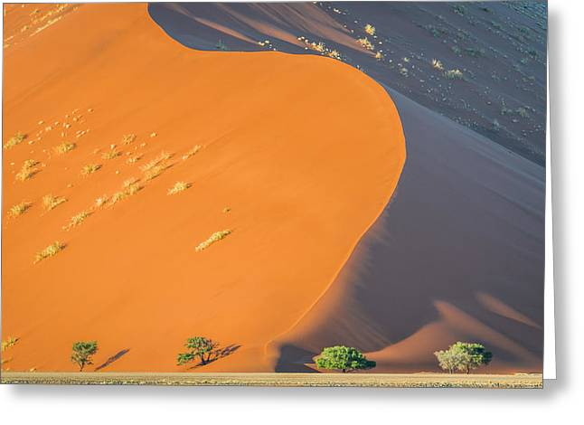 Sossusvlei Dawn - Namibia Sand Dune Photograph Greeting Card by Duane Miller