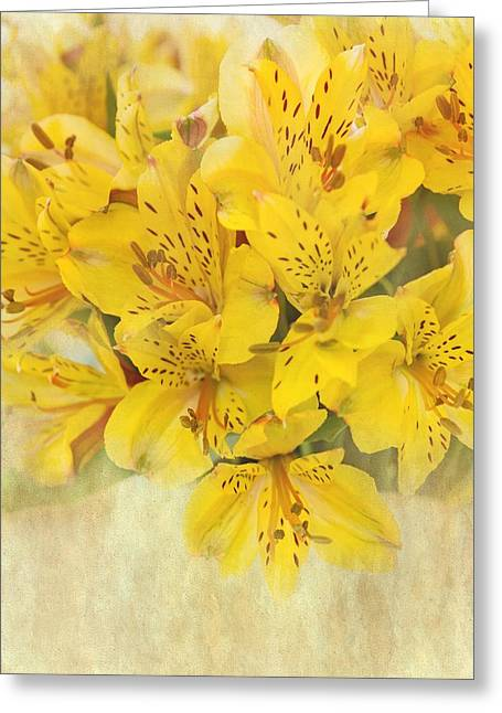Alstroemeria Greeting Cards - Soul of Happiness Greeting Card by Kim Hojnacki