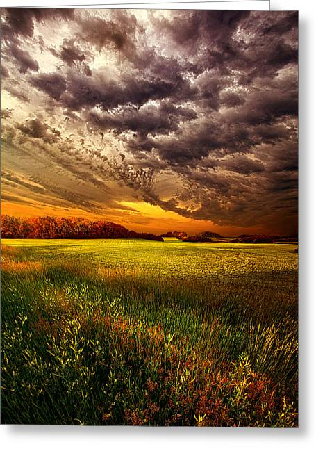 Geographic Greeting Cards - Soulful Greeting Card by Phil Koch
