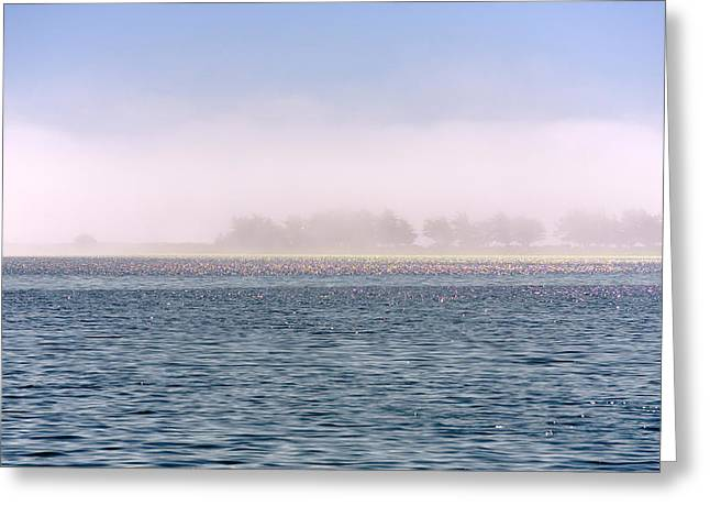 Breezy Greeting Cards - Soulscape Bodega Bay Iridescence Greeting Card by Daniel Furon