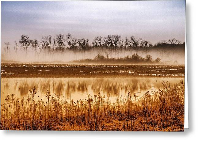 sounds of silence Greeting Card by Tom Druin