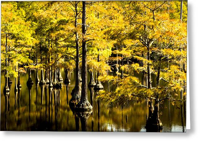 Tranquil Moments Greeting Cards - SOUNDS of TIME Greeting Card by Karen Wiles
