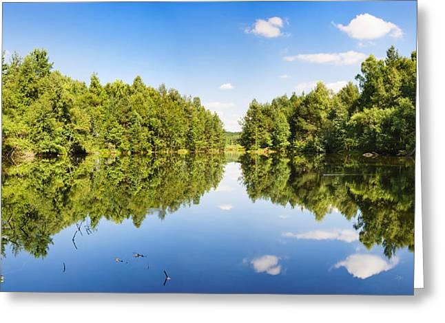 Moo Moo Greeting Cards - Source Of The Neckar River Greeting Card by Panoramic Images