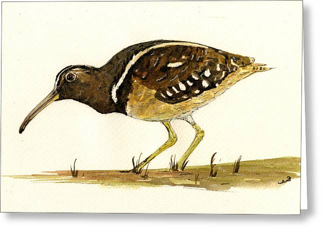 Nature Study Paintings Greeting Cards - South American Painted Snipe Greeting Card by Juan  Bosco
