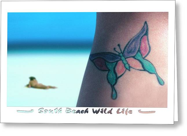Sand Art Digital Art Greeting Cards - South Beach Wild Life Greeting Card by Mike McGlothlen